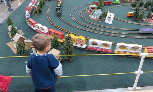 Children were not overlooked. This young man is fascinated by a garden railway set-up.